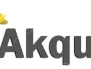 Akquisefehler